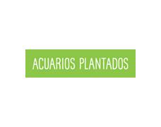 Acuarios Plantados